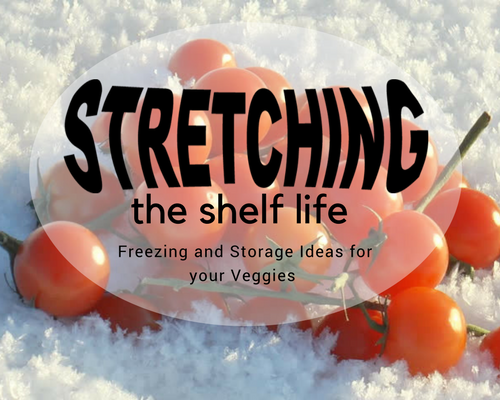 Stretching the Shelf Life