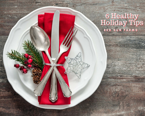 Six Healthy Holiday Tips
