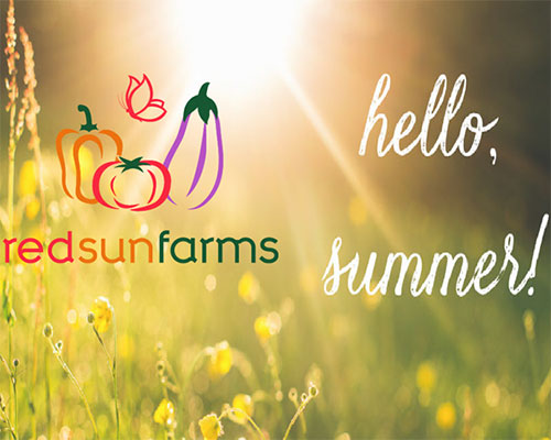 Summer Salads by Red Sun Farms