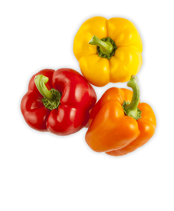Tri Color Sweet Bell Peppers